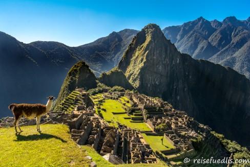 Machu Picchu - Die Inkas erbauten die Stadt im 15. Jahrhundert in 2430 Metern Höhe